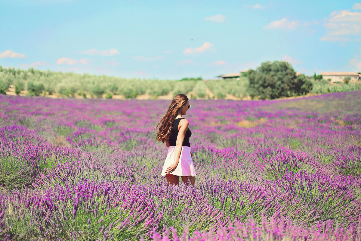 Valensole Provence © Gaëlle Simon